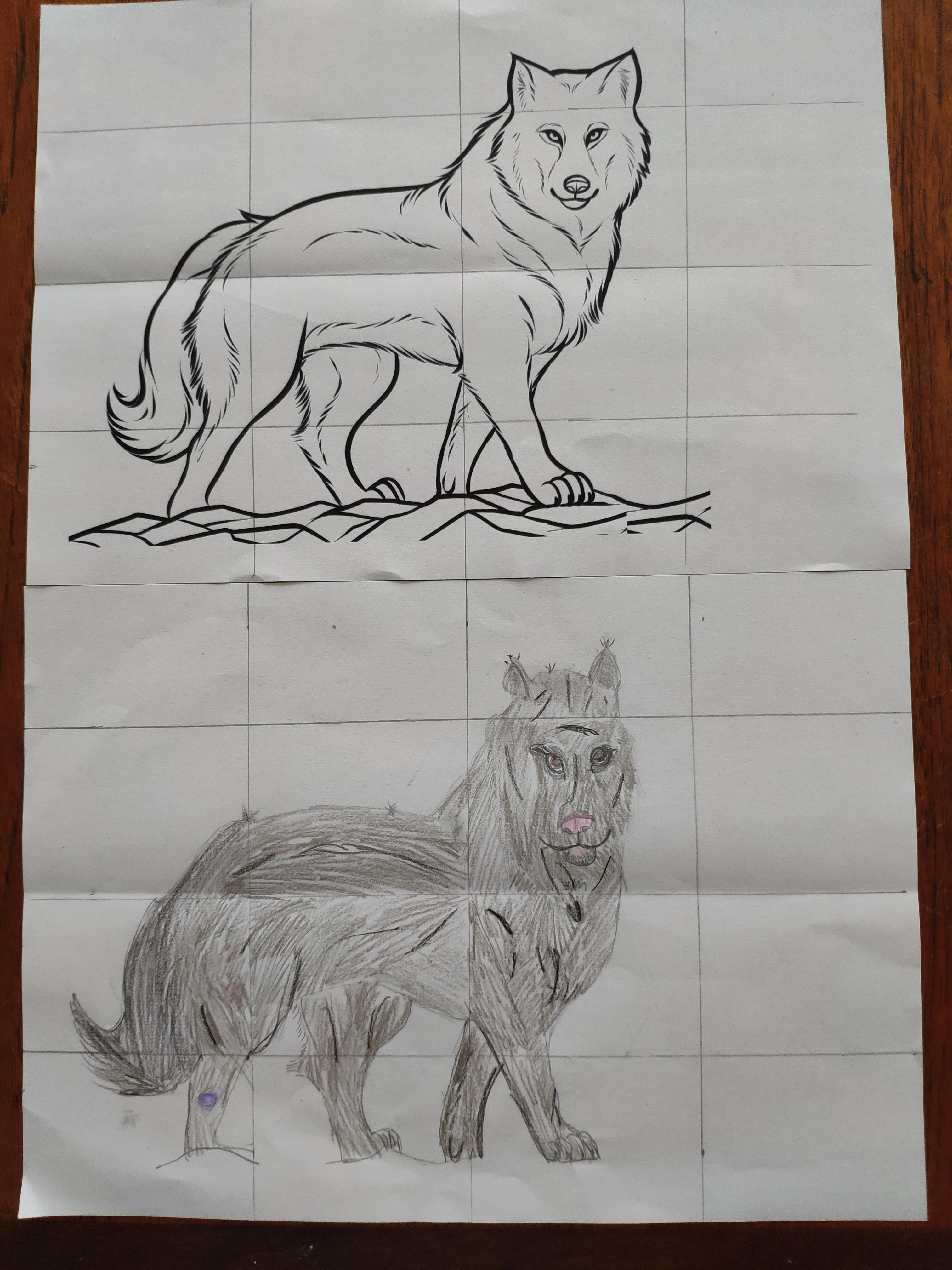 Seren Wolf Image